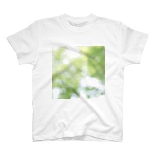 July. T-shirts
