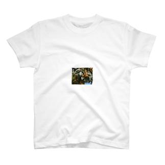 枇杷 T-shirts
