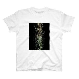 origin-2012/起源2012 T-shirts