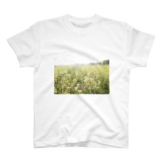 hayaoki T-shirts