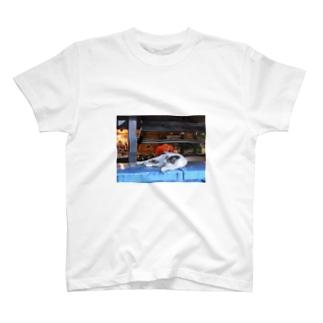 gosui T-shirts