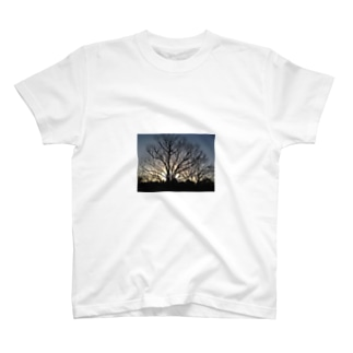 sunrise sunset T-shirts