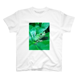 Green Flog T-shirts