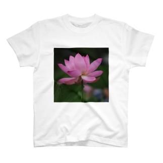 蓮の花 T-shirts