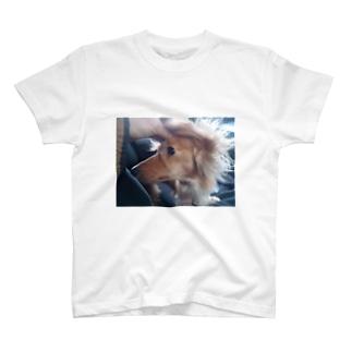 Ear hair here T-shirts