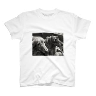 上目使い T-shirts