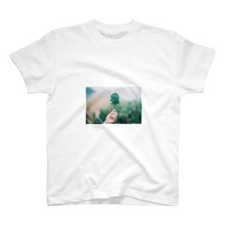 shiokiku T-shirts