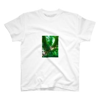 トトロの森へ No2 T-shirts
