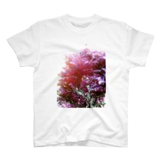樹木 T-shirts