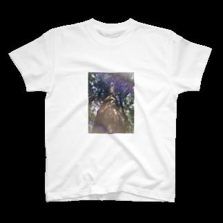風まかせの神杉 T-shirts