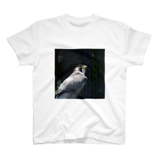 HAYABUSA_i2 T-shirts