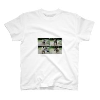 ポキヲ T-shirts