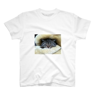 とらきち3 T-shirts