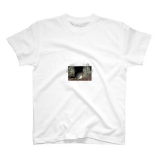 月夜と狐大 T-shirts
