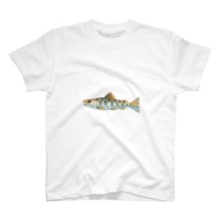 ヤマメ大 T-shirts