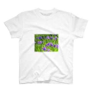 肝心な点は感動すること T-shirts