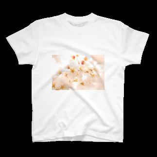 sakuraの新宿御苑の桜 T-shirts