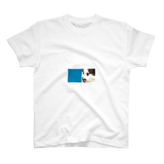 ホルさん T-shirts