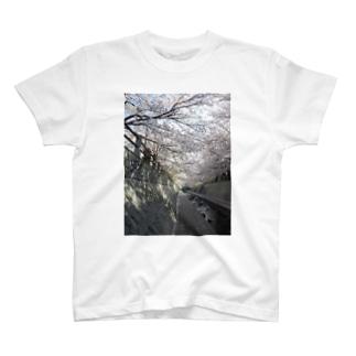 桜小道 T-shirts