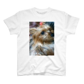真面目なランちゃん T-shirts