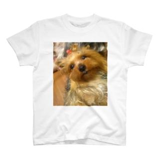 甘えてるランちゃん T-shirts