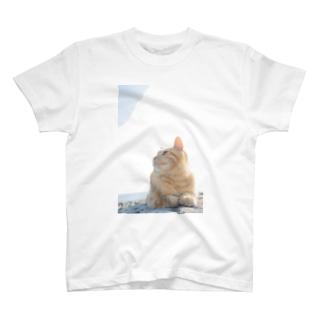 みつめる T-shirts