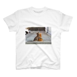 居眠りネコ T-shirts