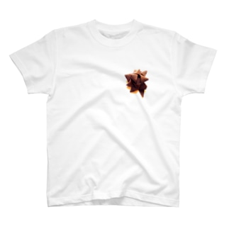 スターボウブローチTee T-shirts