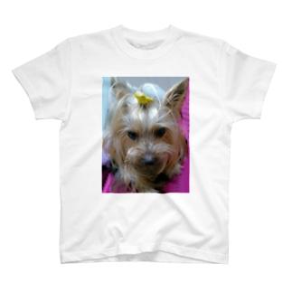 レオくん T-shirts