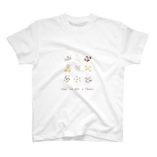 ナチュラルシリーズ「たね」 T-shirts
