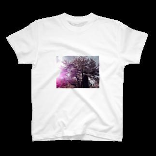 風まかせの満開の桜 T-shirts