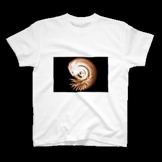 リアルの回転花火#004 T-shirts