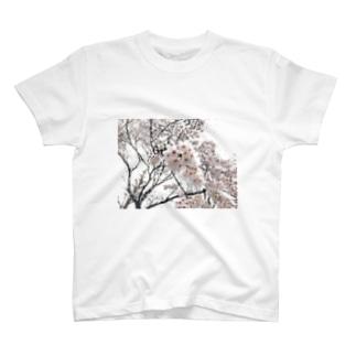 ボリンボリン T-shirts