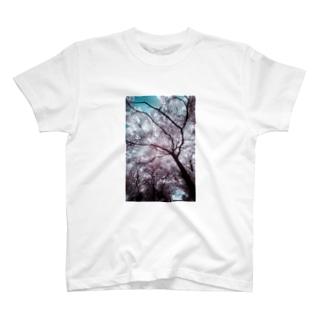 異世界の血管 T-shirts