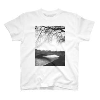 bridge T-shirts