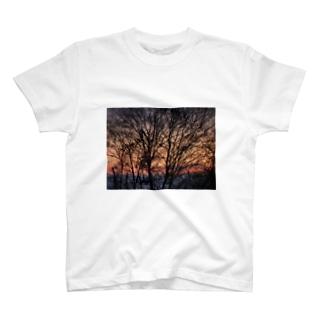 エスニックアート T-shirts
