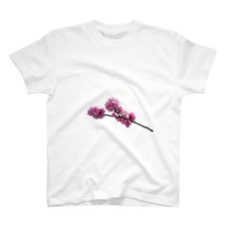 花桃の枝 T-shirts