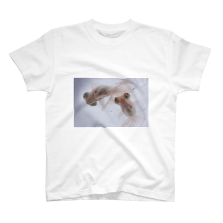 ふくろ金魚のふくろ金魚11 T-shirts