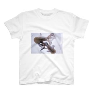 ふくろ金魚のふくろ金魚22 T-shirts