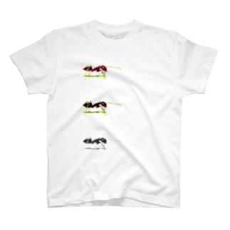 ありんこ T-shirts