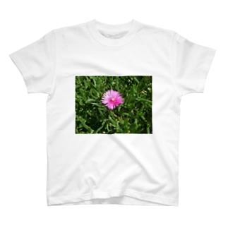 田中民生の小さい可憐な花 T-shirts