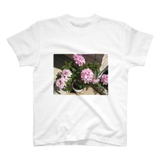 石楠花 T-shirts