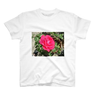 薔薇ver.1 T-shirts