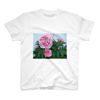 Beautiful peony T-shirts