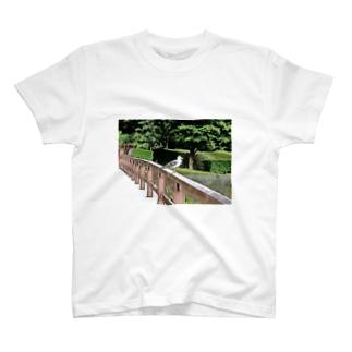 鳥 T-shirts