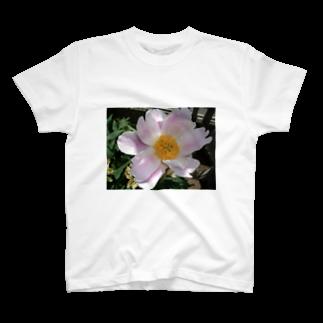 田中民生の芍薬 T-shirts