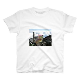 富士8合目ヌードル T-shirts