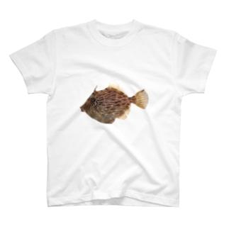俺のカワハギ T-shirts
