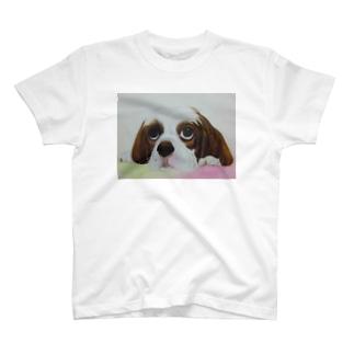 カーペットの上で T-shirts