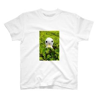 おさないまことのごきげんよう T-shirts